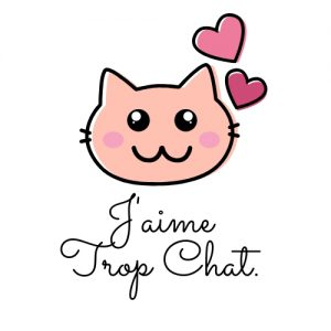 blog_chat_jaimetropchat