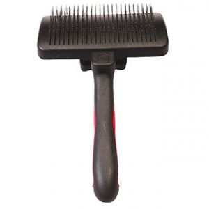 chat_race_british_entretetien_brosse