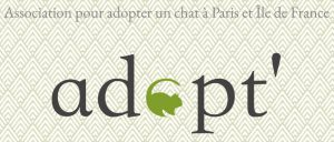 association feline j'aime trop chat adopt for life