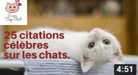citations chat jaimetopchat