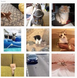 photo-chat-instagram-tag-chat