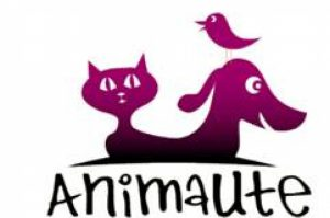 animaute-service-pet-sitting