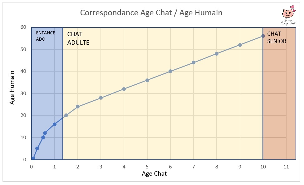 equivalence-age-chat-en-humain